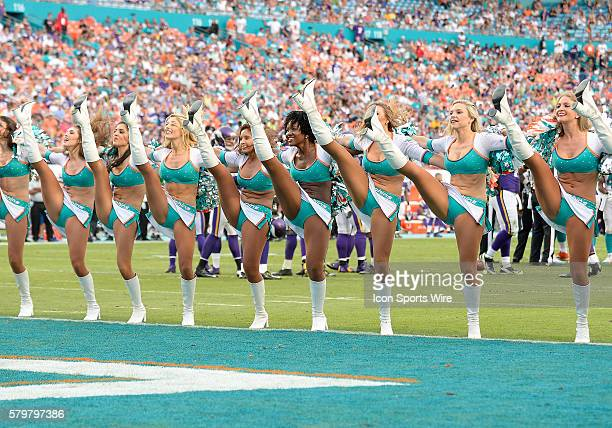 Miami Dolphins cheerleaders perform during the game against the Minnesota Vikings in Miami's 3735 victory at Sun Life Stadium Miami Florida