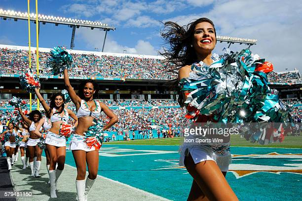 Miami Dolphins cheerleaders perform during the NFL football game between the Baltimore Ravens and the Miami Dolphins at the Sun Life Stadium in Miami...