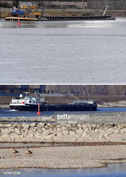 22 December 2018 BadenWuerttemberg Karlsruhe KOMBO The Kombo shows the Rhine near the Rhine bridge near Karlsruhe Maxau on and on After months with...
