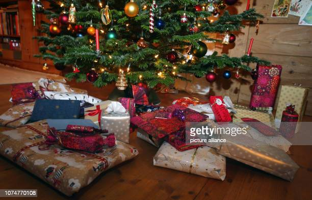 Packed Christmas presents lie under a Christmas tree Photo KarlJosef Hildenbrand/dpa