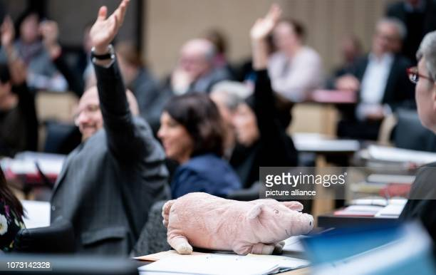 The representatives of the federal states vote for the Good Kita Law behind a pig stuffed animal during the session of the Bundesrat In the last...
