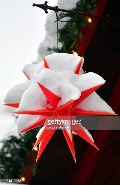 Snow lies on a Herrnhut poinsettia in the toy village of Seiffen During Advent Seiffen is considered a tourist magnet and attracts numerous tourists...