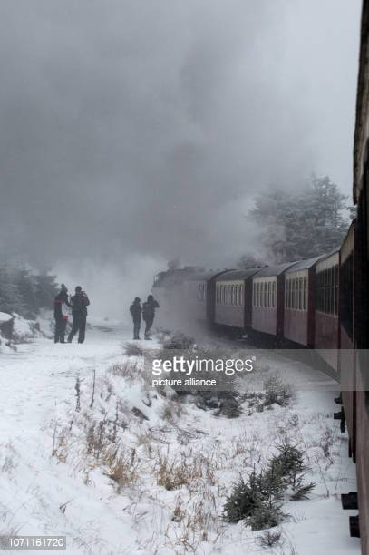 The Brockenbahn of the Harzer Schmalspurbahnen runs through a snowcovered winter landscape past hikers in the direction of Brocken It remains wintry...