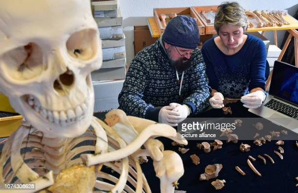11 December 2018 SaxonyAnhalt Halle Nicole Nicklisch anthropologist and Frank Ramsthaler forensic physician examine the mortal remains of the Prince...
