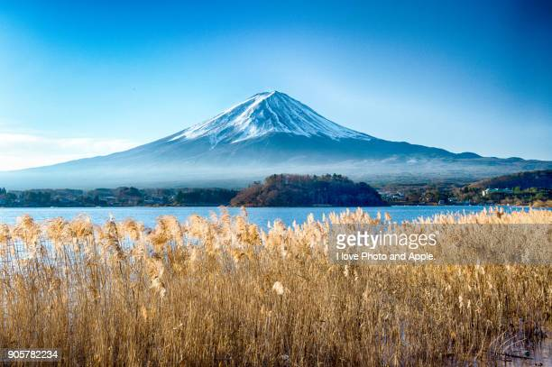 december morning fuji - yamanashi prefecture stock pictures, royalty-free photos & images
