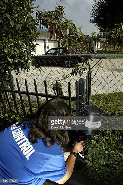 Dechenne Cecil a vector control technician with San Bernardino County collects mosquitoes from an insect trap in a residential area in an effort to...
