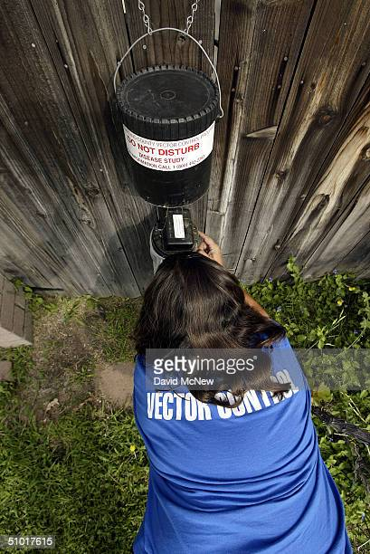 Dechenne Cecil a vector control technician with San Bernardino County collects mosquitoes from an insect trap in an effort to identify 'hot spots'...