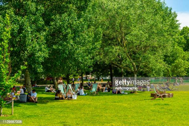 deck chairs on hampstead heath - hyde park london stock pictures, royalty-free photos & images