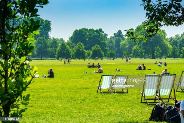 deck chairs on hampstead heath - hyde park london stock photos and pictures