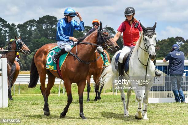 Declan Bates returns to the mounting yard aboard Shehroz after winning the Prestige Jayco Maiden Plate at Colac Racecourse on December 16 2017 in...