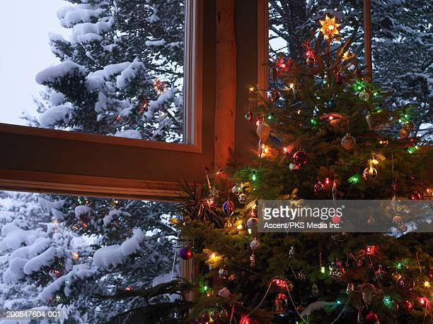 Decorated Christmas tree in living room, snowy fir trees in background