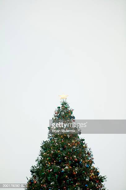 Decorated Christmas tree, low angle view