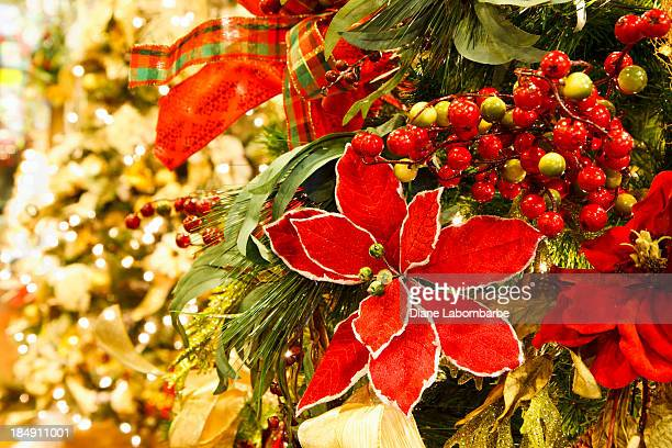 decorated christmas tree with soft lights - poinsettia stock photos and pictures