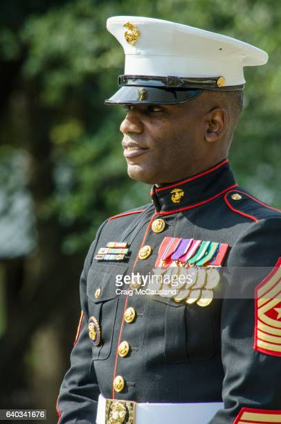 decorated marine gives keynote speech at a veteran's day cermony - marines stock photos and pictures
