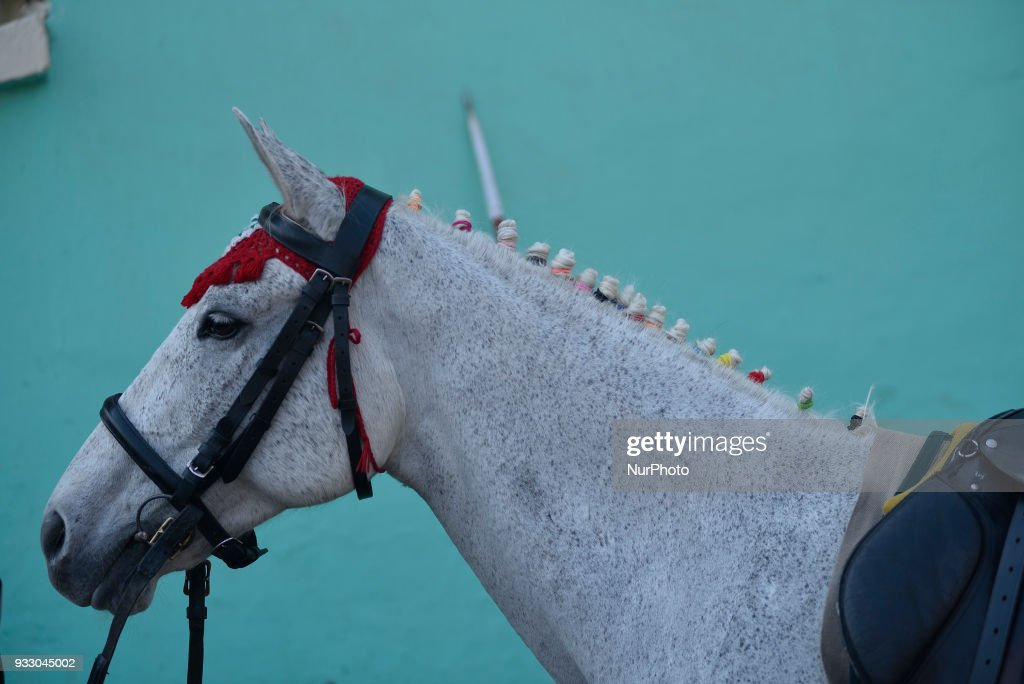 'Festival of Horse' celebrated in Nepal
