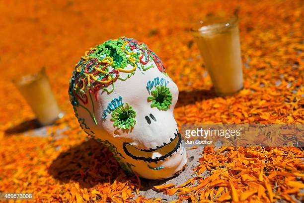 A decorated skull is placed at the altar of the dead a religious site honoring the deceased during the Day of the Dead celebration on November 01...