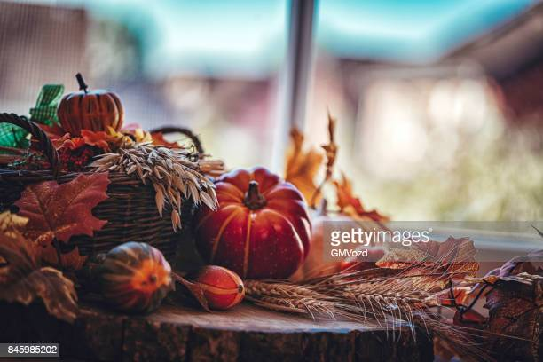 decorated window with pumpkins, leafs and nuts - november background stock photos and pictures