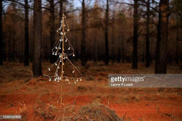 decorated wire christmas tree in red dirt in front of standing burned trees. - lianne loach stock pictures, royalty-free photos & images