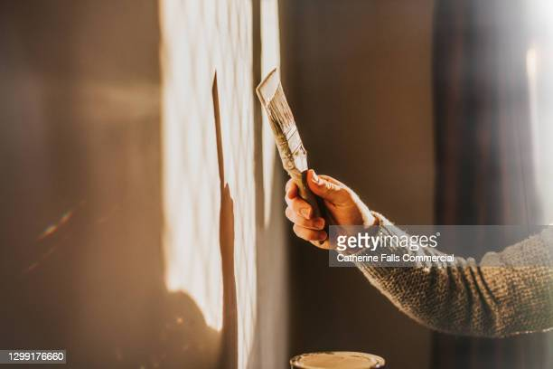decorating - painting a wall with a paintbrush - domestic room stock pictures, royalty-free photos & images