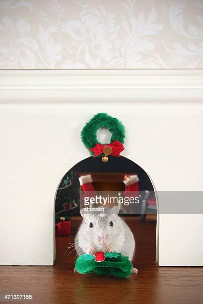 Dekorieren der Mauseloch für Weihnachten