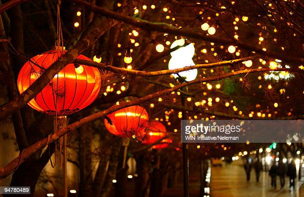 Decoration of new year's eve in a city, Chang'an Avenue, Beijing, China