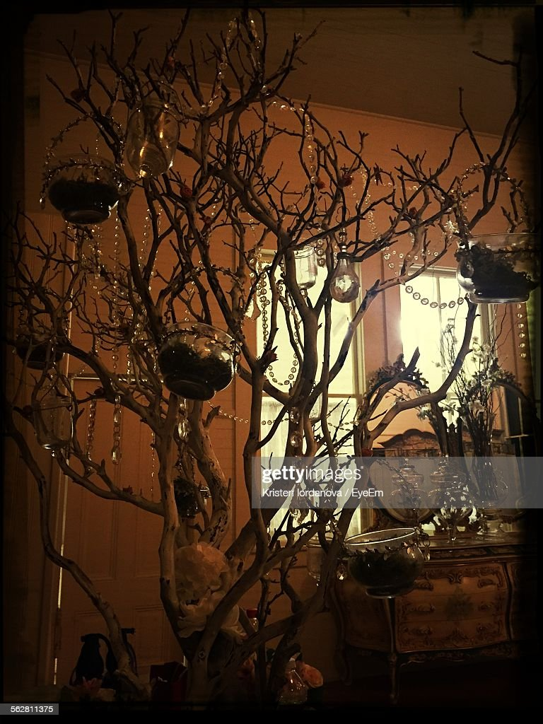 Decorations Hanging On Artificial Bare Tree At Home Stock Photo