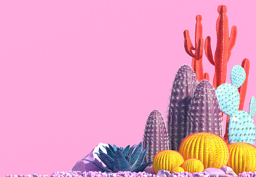 Decorative composition of groups of different species of multicolored cacti on pink background. 1073054344