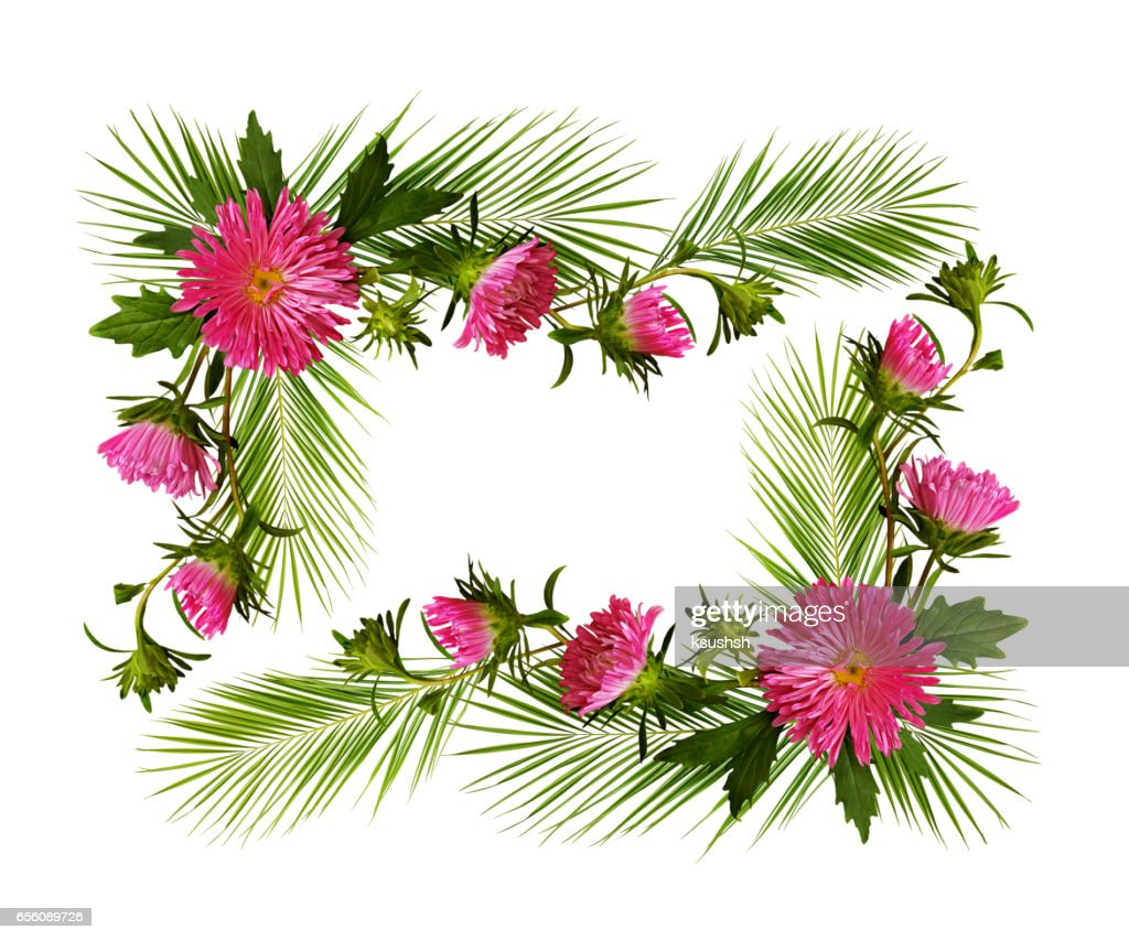 Decorative Frame With Pink Aster Flowers And Pulm Branches Stock