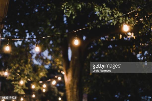 Decorative light in a garden during a summer evening