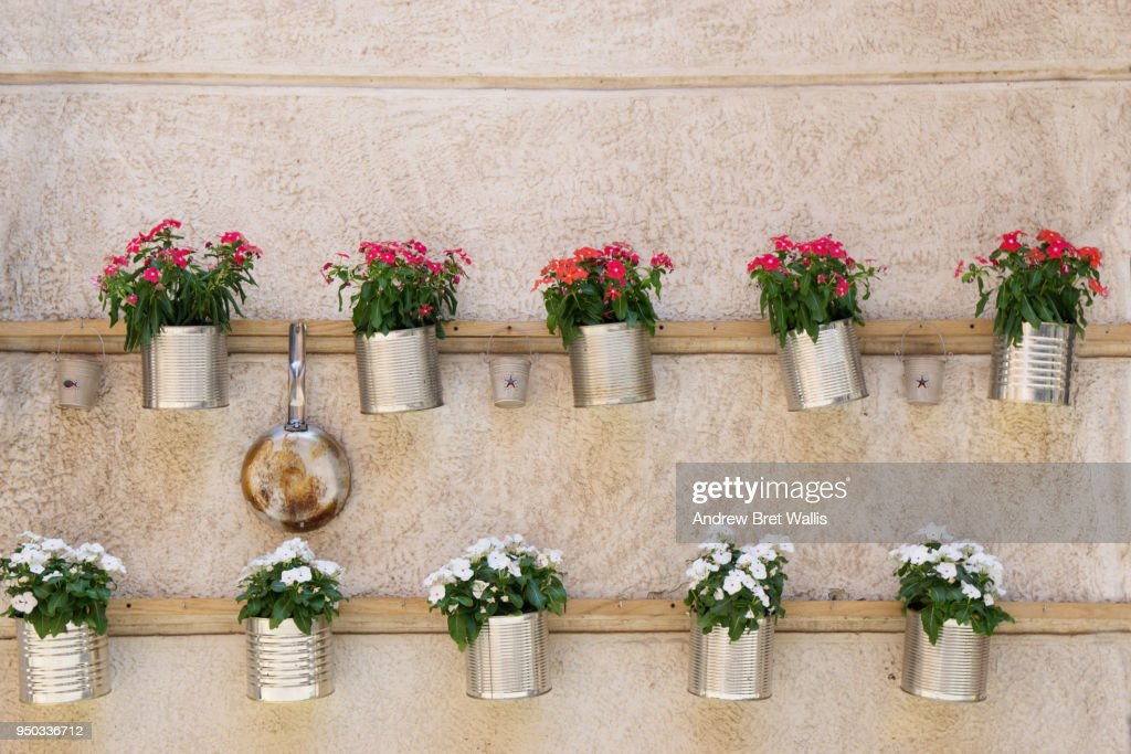 Decorative Recycled Tin Plant Pots Fastened To A Stucco Plaster Wall In Italy High Res Stock Photo Getty Images