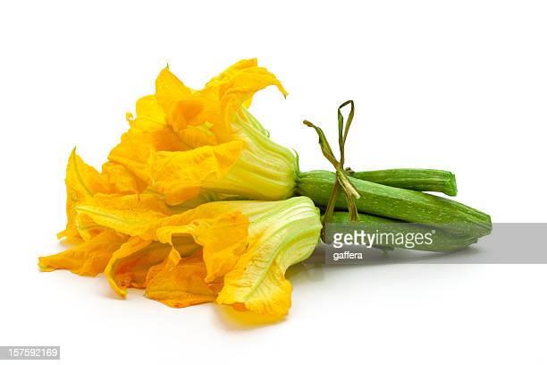 Decorative yellow flowers witch zucchini
