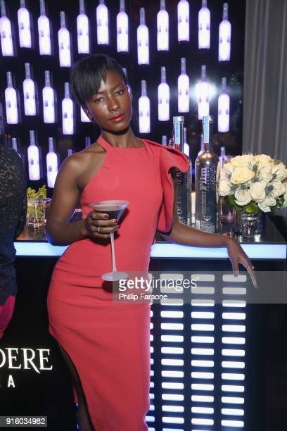 Deddeh Howard celebrates with Belvedere Vodka at The Santa Barbara International Film Festival at Arlington Theatre on February 8 2018 in Santa...