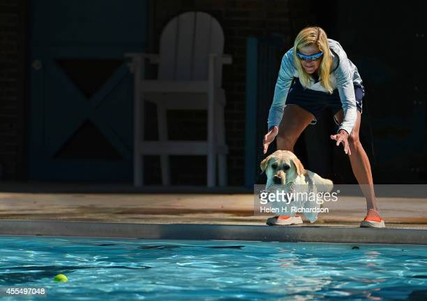 DeDe Griesbauer helps her yellow labrador retriever Piper dive into the water after a tennis ball during Dog Dayz at Scott Carpenter Park Pool in...