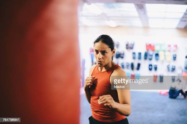 dedicated female athlete looking at punching bag in health club - fighting stance stock pictures, royalty-free photos & images