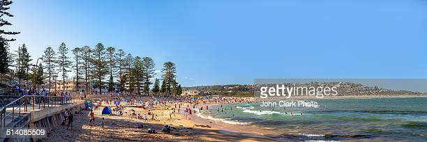Dee Why Beach panorama
