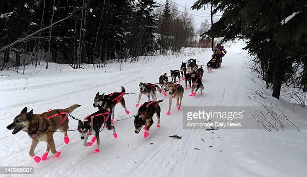 DeeDee Jonrowe leaves the checkpoint in Nikolai Alaska during the Iditarod Trail Sled Dog Race on Tuesday March 6 2012