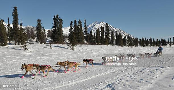 DeeDee Jonrowe mushes across Puntilla Lake as she comes into the Rainy Pass checkpoint during the Iditarod Trail Sled Dog Race on Monday March 7 2011