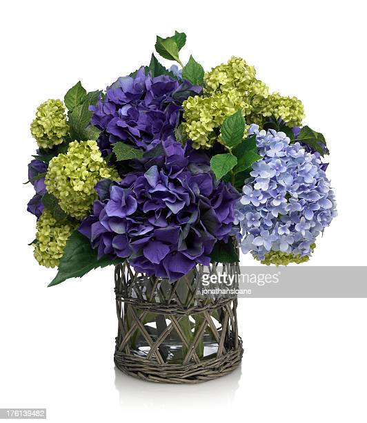 Deep Blue Hydrangea Bouquet on white background