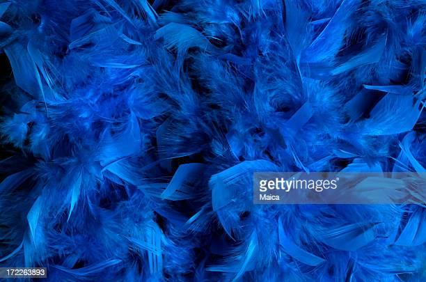 Blu intenso