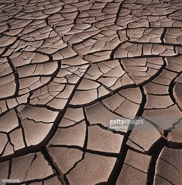 Deep Cracks in the Desert