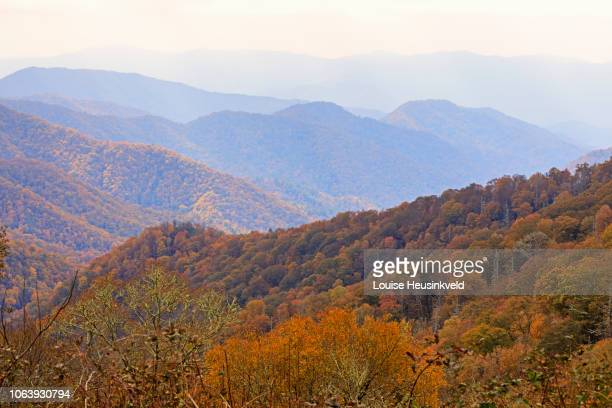 deep creek valley in autumn from newfound gap road south, smoky mountains national park - newfound gap stock pictures, royalty-free photos & images