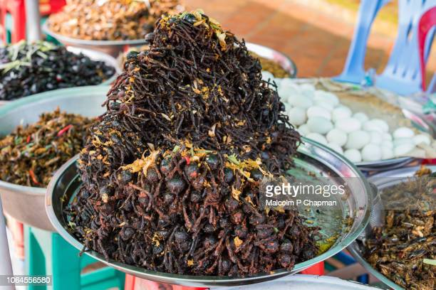 deep fried tarantulas, skuon, phnom penh, cambodia - phnom penh stock pictures, royalty-free photos & images