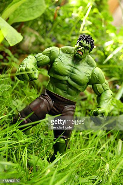 deep in the jungle - incredible hulk stock photos and pictures