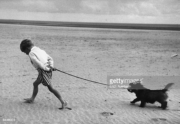 Deep in thought a barefoot young boy takes his dog for a walk across Camber sands