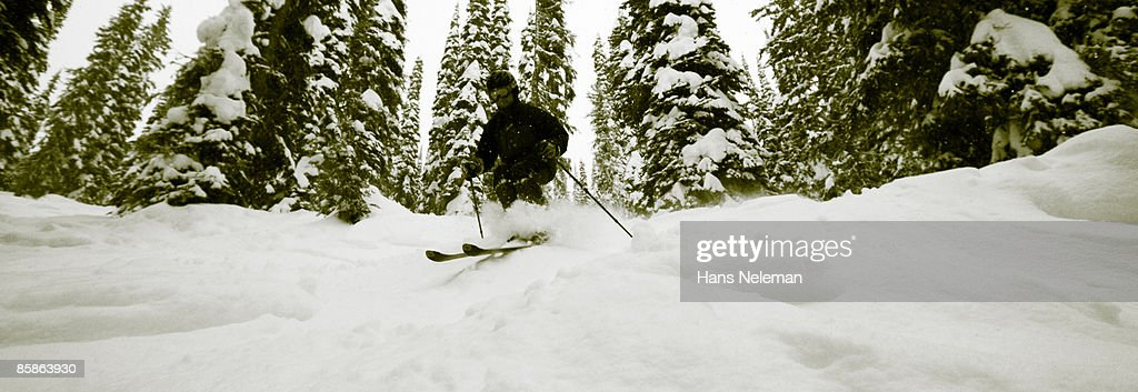 Deep powder in the glades of Whitewater Resort : Stock-Foto