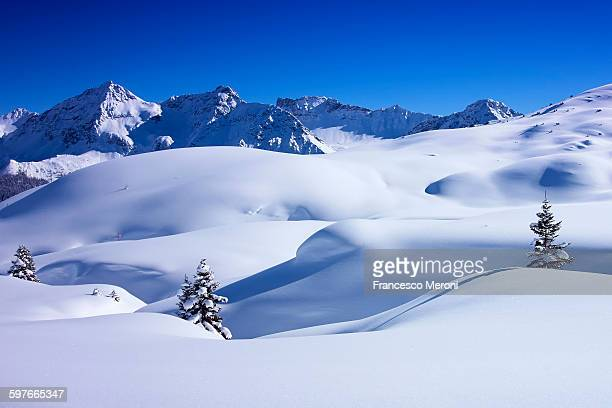 Deep snow covered landscape and fir trees, Arosa, Switzerland