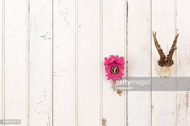 Deer antler and pink cuckoo clock hanging on white wooden wall