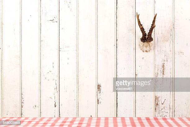 Deer antler hanging on white wooden wall