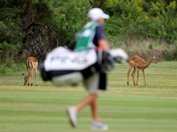ZAF: South African Open - Day Two