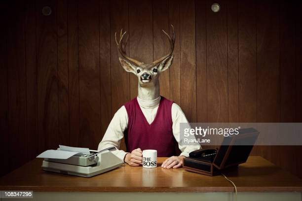 deer ceo at his desk - bizarre stock pictures, royalty-free photos & images